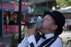 Parrot-show-Kasper-Jensen-2020-10
