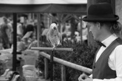 Parrot-show-Kasper-Jensen-2020-13