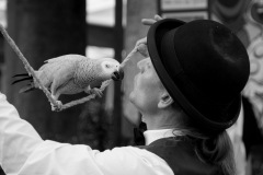 Parrot-show-Kasper-Jensen-2020-17