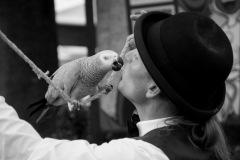 Parrot-show-Kasper-Jensen-2020-18