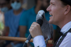 Parrot-show-Kasper-Jensen-2020-23