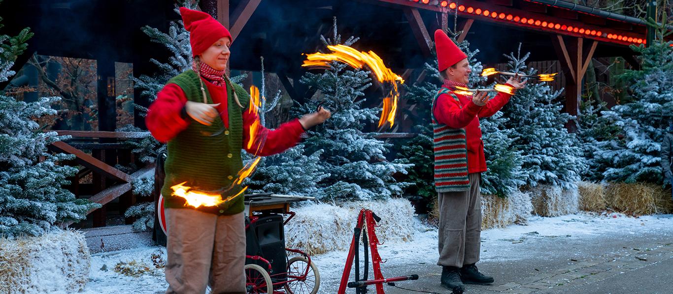 Christmas show 5
